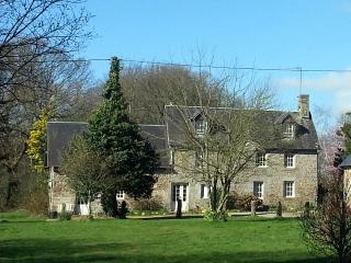 Nice Bed and Breakfast with Internet Access and Central Heating - Champcervon vacation rentals