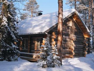 Sapara 2 Bedroom - Akaslompolo vacation rentals