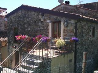 Rustico con giardino sulla collina di Viareggio. - Massarosa vacation rentals