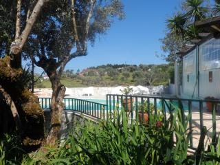 Perfect 3 bedroom Farmhouse Barn in Tomar - Tomar vacation rentals