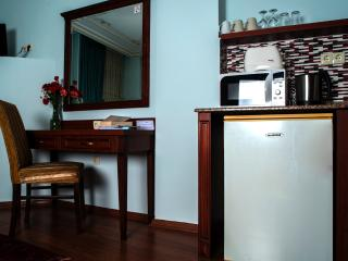 Economy Studio Room with BB in Sultanahmet - Istanbul vacation rentals