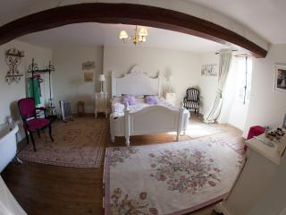 Gorgeous, comfortable Mayenne House near Chateaux - Lassay-les-Chateaux vacation rentals