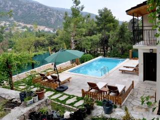 Beautiful Villa with Internet Access and Satellite Or Cable TV - Islamlar vacation rentals