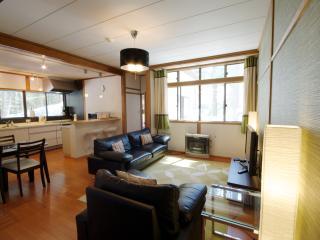 Hakuba Forest House - Self Contained Accommodation - Hakuba-mura vacation rentals