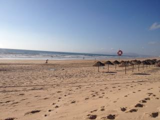 Nice Condo with Internet Access and Short Breaks Allowed - Almada vacation rentals