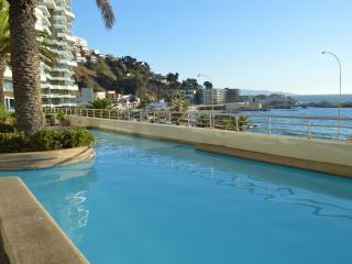 Great Apartment Viña del Mar Chile Valaparaiso!! - Vina del Mar vacation rentals