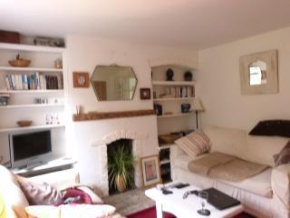 Meadow Cottage - Westbury vacation rentals