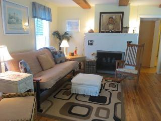 Cozy Cottage with Deck and Internet Access - LaPorte vacation rentals