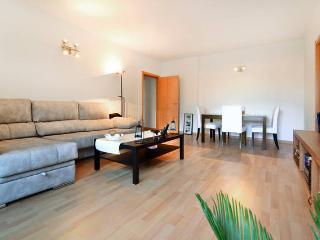 Nice Condo with Internet Access and Garden - Badalona vacation rentals