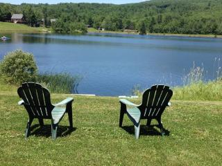 PINE LAKE LODGE WALKING DISTANCE TO  HUNTER MT. - Catskills vacation rentals