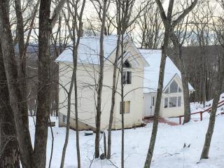 Modern & Cozy House In Bushkill - Bushkill vacation rentals