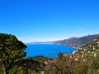 Villa Portofino New 1BR best view - Camogli vacation rentals
