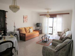 Algarve Boliqueime 1 bedroom near Albufeira - Boliqueime vacation rentals