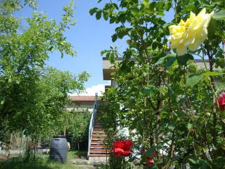 Holiday apartment between Tuscany and Liguria - Albiano Magra vacation rentals
