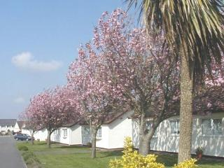 No 1 The Bungalow - by Gower's best beaches - Rhossili vacation rentals