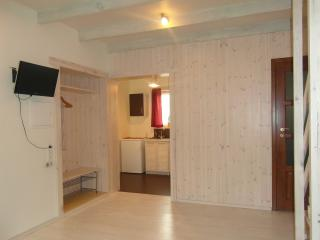 Wooden centre located cottage in Druskininkai - Druskininkai vacation rentals