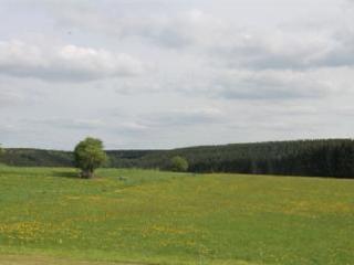 Au fil des saisons sur la Wiels: Savanne en Ete - Fauvillers vacation rentals
