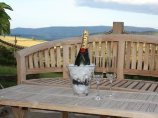 The Byre - Brecon vacation rentals