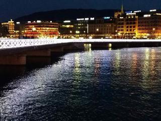 * Cheap * center of Geneva * - Lake Geneva vacation rentals
