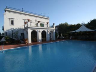 VILLA 1881 INFINITY SWIMMING POOL-SORRENTO-POSITAN - Colli di Fontanelle vacation rentals