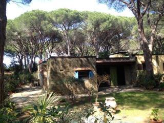 Porzione Alvino - Castiglione Della Pescaia vacation rentals