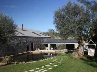 Nice Watermill with Deck and Internet Access - Pombal vacation rentals