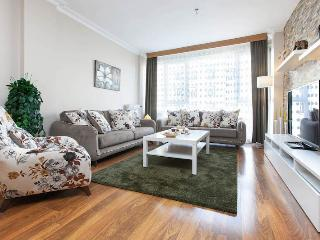 Amazing Apartment & Next To Metro Station - Istanbul vacation rentals