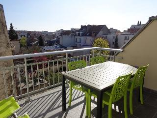 Cathedral area, 1 large BR, parking & terrace - Reims vacation rentals