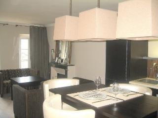 Modern apartment Porte de Versailles Paris exhibit - Issy-les-Moulineaux vacation rentals