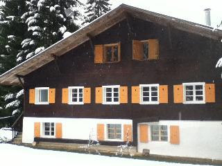 Chalet Alpe Massif - Morillon vacation rentals