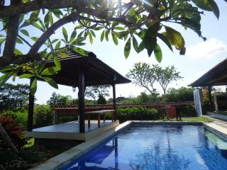 Spacious 2 BR Villa in Canggu with ricepaddy-view - Bali vacation rentals
