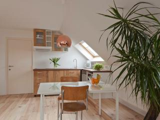 Cosy apartment with bicycles - Ghent vacation rentals