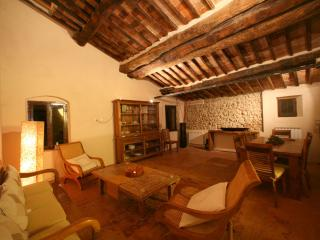 Tiziano/Leo. apartment near Siena Tuscany - Siena vacation rentals