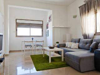 Amazing first line to the beach apartment - Tel Aviv vacation rentals