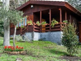 Chalet Baita del convento - Nicolosi vacation rentals