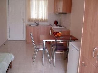 Nice Studio with Internet Access and A/C - Lechaio vacation rentals
