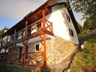 Villa Relax Kopaonik - Kopaonik vacation rentals