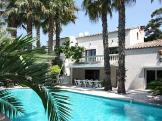 Pierrot 33550 villa amidst a garden with 200 palm trees, pool of 12 x 6 mtr. - Biot vacation rentals
