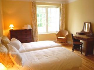 The Yellow Bedroom - Clos Mirabel B&B - Jurancon vacation rentals