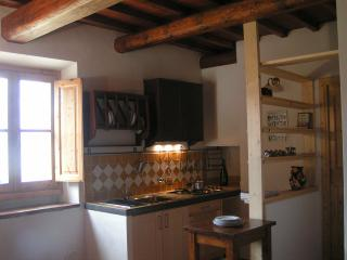 Florence nearby country house - Pontassieve vacation rentals
