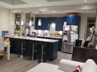 Full house near central London, sleeps 7 - London vacation rentals