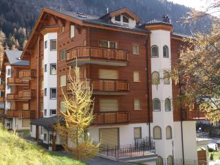5* luxury apartment, sleeps up to 4, Swiss Alps - Leukerbad vacation rentals