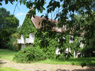 Gîte Nièvre Bourgogne Pouilly Sancerre La Charité - Narcy vacation rentals