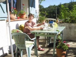Self catering in South West France opposite lake - Degagnac vacation rentals