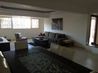 elegant and centrical apartment - Santo Domingo vacation rentals