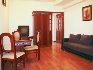 Like a Suite in a hotel in Yerevan center - Armenia vacation rentals