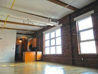 Stunning Dowtown 3BD Loft - Cincinnati vacation rentals