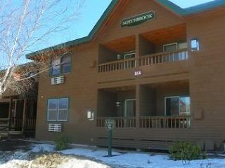 Deer Park 2 Bedroom with free shuttle to Loon Mountain! - North Woodstock vacation rentals