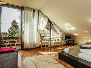 Terrace Apartment (3 Bedroom - max. 5 pax) - Munich vacation rentals