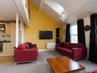 Penthouse University Area with parking (sleeps 8) - Belfast vacation rentals